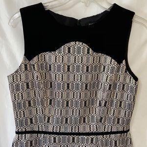 Tahari dress (size 6P)